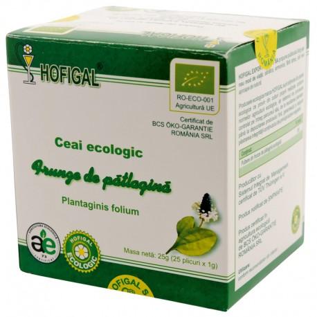 Ceai Ecologic - FRUNZE DE PATLAGINA
