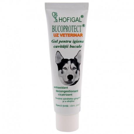 BUCOPROTECT – uz veterinar