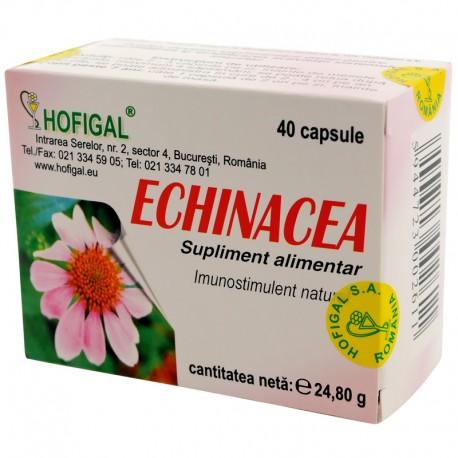 Echinacea extract concentrat (capsulex0,5g)